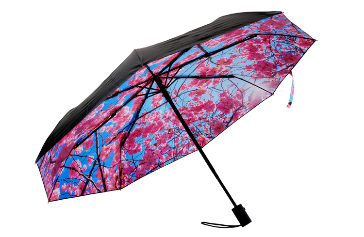 Happy Places to go von HappySweeds: Umbrella Cherry